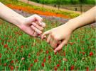 Заговор для примирения любовь