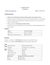 fill in the blanks resume resume blank resume blank pdf of the fill in the blank resume pdf resume resume