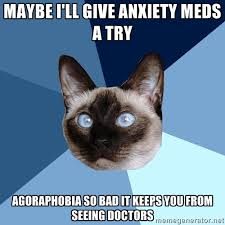 Maybe I'll give anxiety meds a try agoraphobia so bad it keeps you ... via Relatably.com
