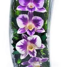 """Купить Цветы в стекле """"Ветер"""" <b>композиция</b> из орхидей по цене 4 ..."""