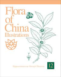 Flora of China Illustrations, Volume 12: Hippocastanaceae through ...