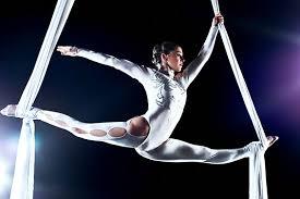 Image result for cirque du soleil volta