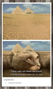 Cats Were Worshiped In Ancient Egypt - Funny Images and Memes To ... via Relatably.com