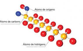Resultado de imagen de ácidos grasos