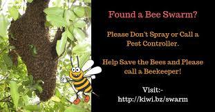 <b>Bee</b> Swarm <b>Collectors</b>
