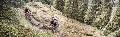 Conquers <b>every</b> mountain: <b>All</b>-mountain FOCUS <b>JAM</b> | FOCUS Bikes