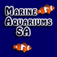 Jungle Aquatics | Marine Aquariums South Africa