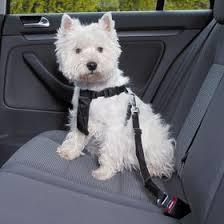<b>Автомобильный ремень</b> безопасности для собак <b>Trixie</b>