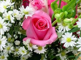 fiori per te