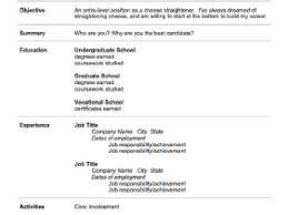 equity trader cv free fund manager resume writer for equity resume cv cover leter ipnodns equity trader resume