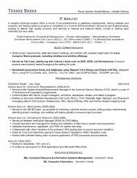 analyst resume it analyst resume