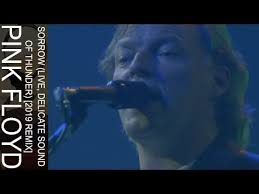 Pink Floyd - Sorrow (Live, <b>Delicate Sound Of Thunder</b>) [2019 Remix ...