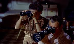 the spider s web rear window alfred hitchcock 1954