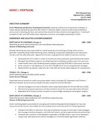 executive summary resumes template executive summary resumes