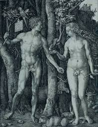 essay  quot men  women and computers quot dürer  adam and eve dürer  adam and eve