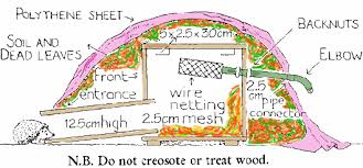 Hedgehog Bottom Rescue   Build a Hedgehog HouseTwo thirds fill the house   dry leaves or dust   hay  not straw  and replace the lid  Hide the hedgehog house under some evergreen bushes or shrubs