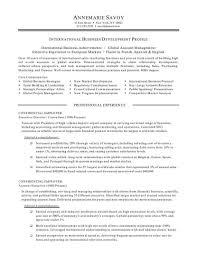 business development manager resume samples business development business development manager resume objective business management business development executive resume sample business development executive resume