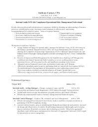it program manager sample senior auditor resume  seangarrette coit