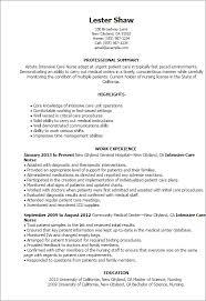 example of a resume for a nurse   cv writing servicesexample of a resume for a nurse nurse resume example rn resume intensive care nurse resume