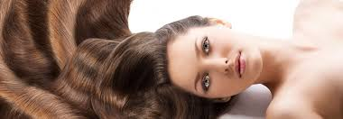 Products - <b>Hair Company</b>