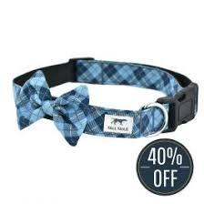 Blue Plaid <b>Fashion Dog</b> Collar