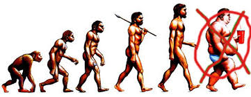 Evolution of the human diet.