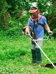SHINDAIWA - <b>Professional</b> machines for green maintenance