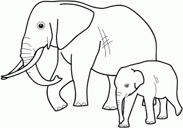 Small Picture Animals Coloring Pages Animal Coloring Sheets Pics Of Animals