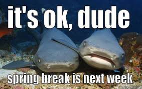 Compassionate Shark Friend memes | quickmeme via Relatably.com