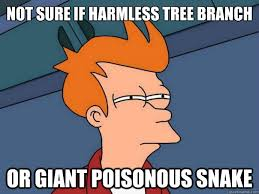 Not sure if harmless tree branch or giant poisonous snake ... via Relatably.com