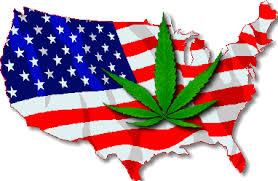 Image result for marijuana flag gif