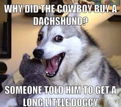 The Best Worst Jokes From Pun Husky - Mandatory via Relatably.com