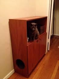 cat litter cabinet diy cat litter cabinet diy