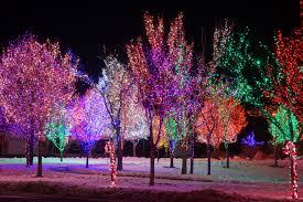 photo essay roy wins at christmas lights signpost roy christmas lights lichelle jenkins the signpost