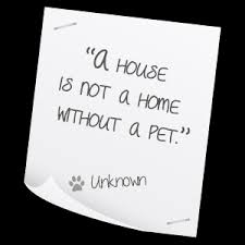 Pet Quotes. QuotesGram via Relatably.com