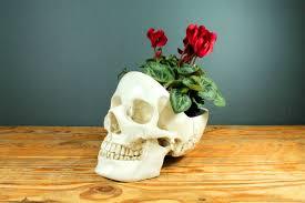 <b>Органайзер для мелочей Skull</b>, белый от SUCK UK (арт. SK ...