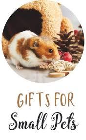 <b>Christmas</b> | <b>Pets</b> At Home