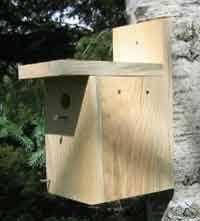 Over Free Bird House and Bird Feeder Woodcraft Plans at    Simple Bird House Plan