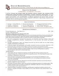 business analyst professional summary resume summary of resume template resume summary volumetrics co resume summary of qualifications sample entry level summary of qualifications