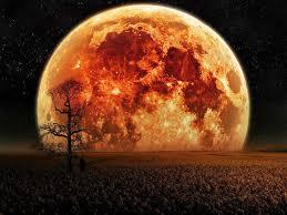 Full Moon Tonight Images?q=tbn:ANd9GcS4WT4hNAt9E7KeZk7Yy4PVQxbJnF6VU7Ak3uDnEPNboA5kMWOJ