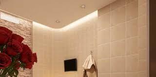 bathroom ceilings ceiling design and bathroom on pinterest bathroom lighting ideas bathroom ceiling
