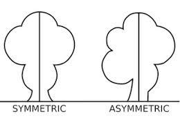 Resultado de imagen de symmetry
