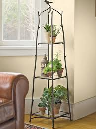 room plants x:  gs  branch plant stand
