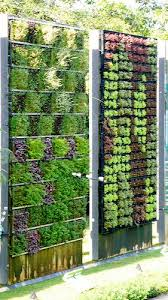 gallery outdoor living wall featuring: wall gardening how to create a drought resist living wall garden http