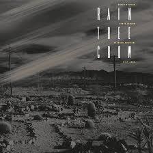 David Sylvian's <b>Rain Tree Crow</b> Set For Deluxe Vinyl Reissue