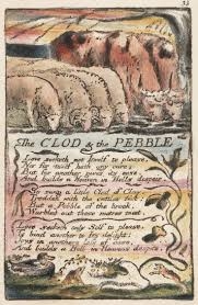 best images about william blake english mothers songs of innocence the clod and the pebble