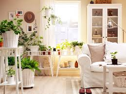 plants bedroom exciting