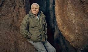 David Attenborough will unearth the hidden world of <b>PLANTS</b> in his ...
