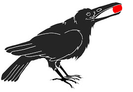 Image result for crows drawing