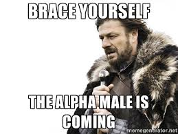 Brace yourself The alpha male is coming - Brace yourself | Meme ... via Relatably.com